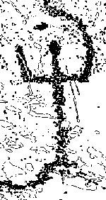 Antropomorphic figure
