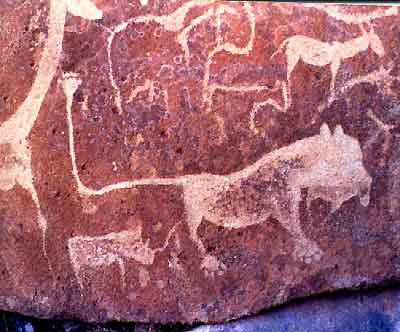 Lion from Twyelfontein