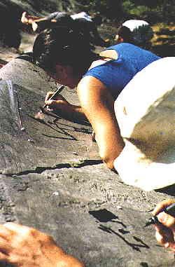 Rock Art tracing