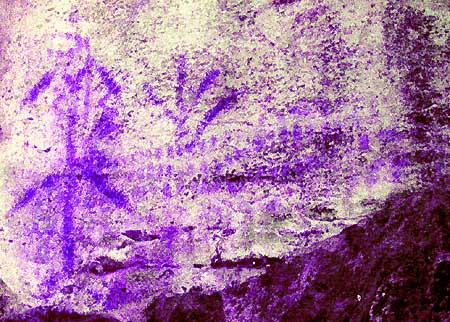 A particular of the digital tracing of the Cavour rock paintings.