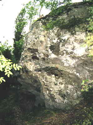 Figure 2: the boulder with petroglyphs knwn as <em>Sasso delle Fate</em>. The dimensions are about 3x4x5 m