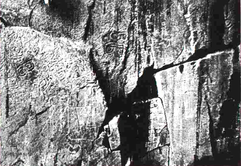 Tracce ancient rock carvings of hong kong