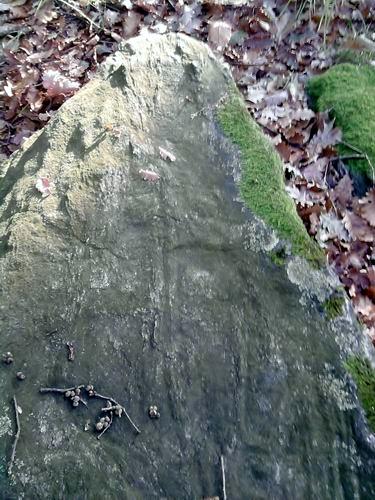 Foto 4: petroglifo Porto Ceresio