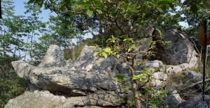 Complesso megalitico del Bric Sparossino