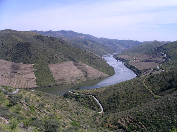 Douro river valley, Portugal, the Vermelhosa area