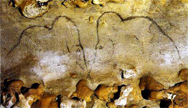 Mammoth depictions at Rouffignac cave (F; by Postcard © Editions Rene)