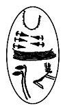 logo_ccsp
