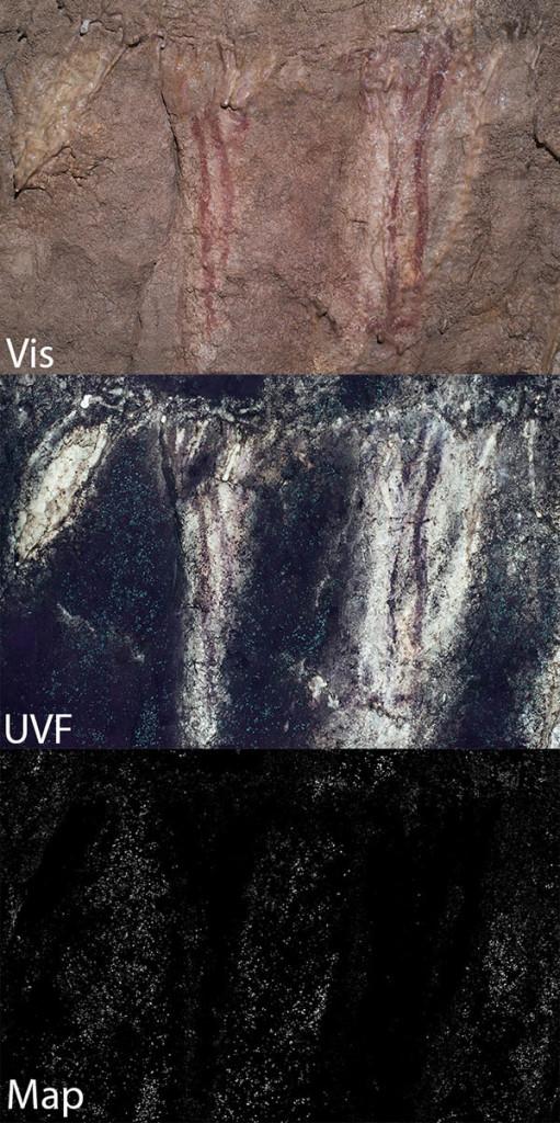UVF-MAP