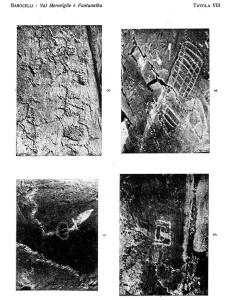 Barocelli 1921 – Tavola VIII