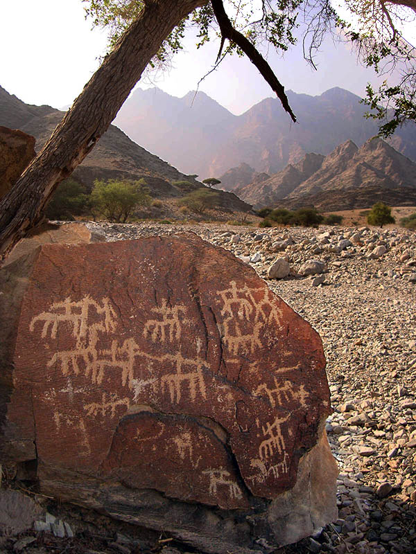 Fig. 12 - A group of  riders on horses and camels engraved on a boulder near  Al-Hemyaniya village - Wadi Al Ayn - (photo by Angelo Fossati)
