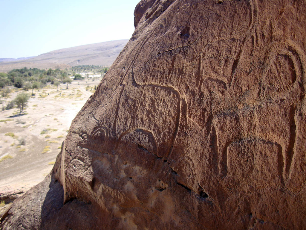 Fig. 5 - Group of goat like figures engraved in an outcrop at Shenah - (photo by Angelo Fossati)