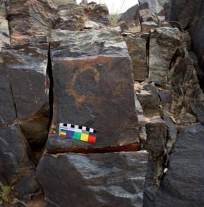 Fig. 5 Capride inciso su una roccia di Shotor Sang (foto: Dario Sigari)