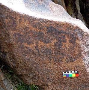 Fig. 7 Roccia incisa a Shotor Sang. L'erosione superficiale ha favorito la formazione di una patina ossidata che si confonde con i colpi di martellina che definiscono le singole figure (foto: Dario Sigari)