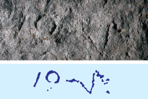 Iscrizione IOVI