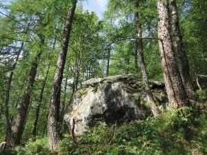 Il Ròch dij Gieugh e il bosco che lo circonda
